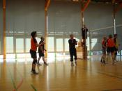 Volleyball 2007 005.jpg